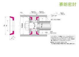 日本NOK-CPH型活塞密封