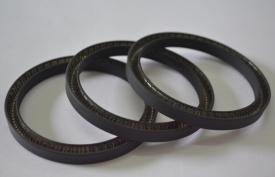 带板弹簧的U-形组合密封圈